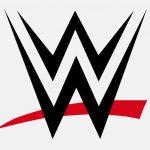 WWE Fight 2020